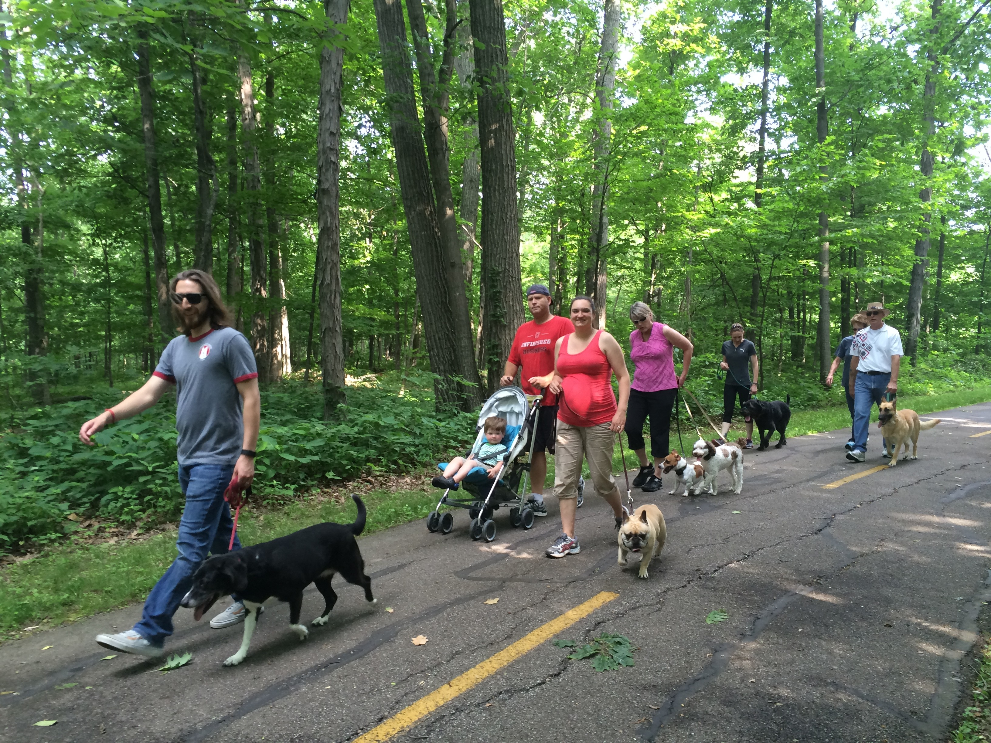 Pack Walks - Group